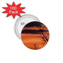 Tree branches and sunset 1.75  Buttons (100 pack)  by picsaspassion