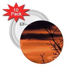 Tree Branches And Sunset 2 25  Buttons (10 Pack)  by picsaspassion
