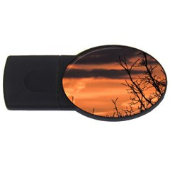 Tree Branches And Sunset Usb Flash Drive Oval (2 Gb)  by picsaspassion