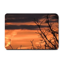 Tree Branches And Sunset Small Doormat  by picsaspassion