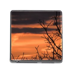 Tree Branches And Sunset Memory Card Reader (square) by picsaspassion