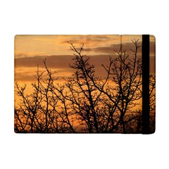 Colorful Sunset Apple Ipad Mini Flip Case by picsaspassion