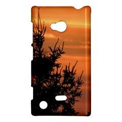 Christmas tree and sunset Nokia Lumia 720 by picsaspassion