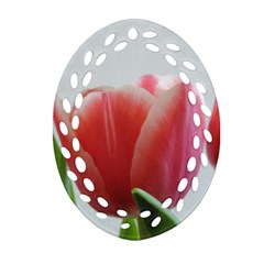 Red Tulips Ornament (oval Filigree)  by picsaspassion