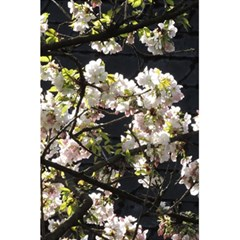 Blooming Japanese Cherry Flowers 5 5  X 8 5  Notebooks by picsaspassion