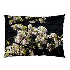 Blooming Japanese Cherry Flowers Pillow Case (two Sides) by picsaspassion