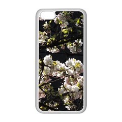 Japanese Cherry Flower Apple Iphone 5c Seamless Case (white) by picsaspassion