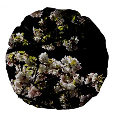 Japanese Cherry Flower Large 18  Premium Flano Round Cushions by picsaspassion