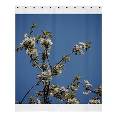 White Cherry Flowers And Blue Sky Shower Curtain 60  X 72  (medium)  by picsaspassion