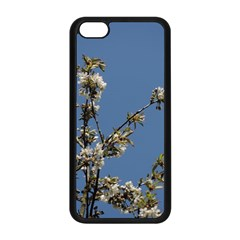 White Cherry Flowers And Blue Sky Apple Iphone 5c Seamless Case (black) by picsaspassion