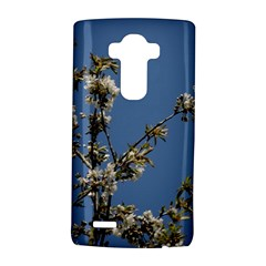 White Cherry Flowers And Blue Sky Lg G4 Hardshell Case by picsaspassion