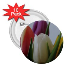 Colored By Tulips 2 25  Buttons (10 Pack)  by picsaspassion