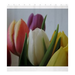 Colored By Tulips Shower Curtain 66  X 72  (large)  by picsaspassion