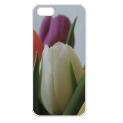 Colored By Tulips Apple Iphone 5 Seamless Case (white) by picsaspassion