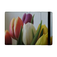 Colored By Tulips Ipad Mini 2 Flip Cases by picsaspassion