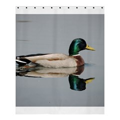 Wild Duck Swimming In Lake Shower Curtain 60  X 72  (medium)  by picsaspassion