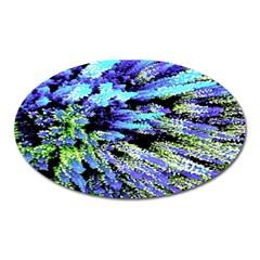 Colorful Floral Art Oval Magnet by yoursparklingshop