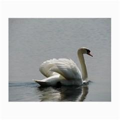 Swimming White Swan Small Glasses Cloth by picsaspassion