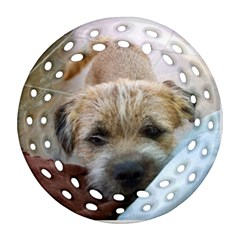 Border Terrier Begging Round Filigree Ornament (2Side) by TailWags
