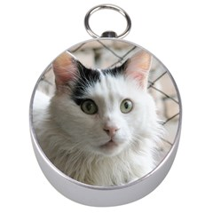 Turkish Van Silver Compasses by TailWags
