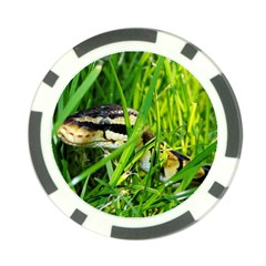 Ball Python In Grass Poker Chip Card Guards (10 pack)  by TailWags