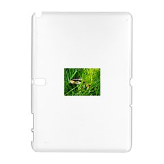 Ball Python In Grass Samsung Galaxy Note 10.1 (P600) Hardshell Case by TailWags