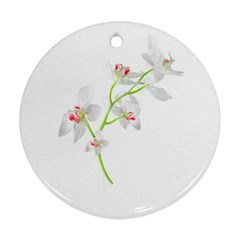 Isolated Orquideas Blossom Ornament (round)  by dflcprints