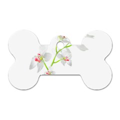 Isolated Orquideas Blossom Dog Tag Bone (one Side) by dflcprints