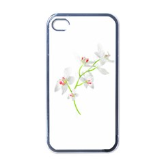 Isolated Orquideas Blossom Apple Iphone 4 Case (black) by dflcprints