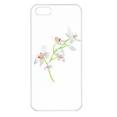 Isolated Orquideas Blossom Apple Iphone 5 Seamless Case (white) by dflcprints