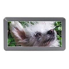 Chinese Crested Memory Card Reader (Mini) by TailWags