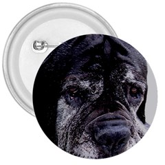 Neapolitan Mastiff 3  Buttons by TailWags