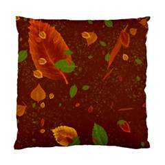 Autumn 01 Standard Cushion Case (one Side) by MoreColorsinLife