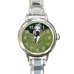 Bearded Collie In Motion Round Italian Charm Watch by TailWags