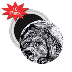 Newfoundland Art 2.25  Magnets (10 pack)  by TailWags