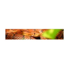 Sunkissed Corn Snake Flano Scarf (Mini) by TailWags