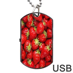 Red Fruits Dog Tag USB Flash (Two Sides)  by AnjaniArt