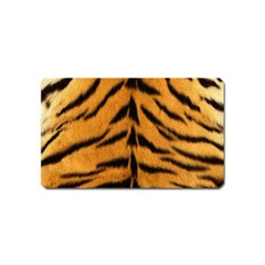 Tiger Skin Magnet (name Card) by AnjaniArt