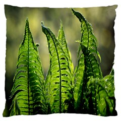 Fern Ferns Green Nature Foliage Large Flano Cushion Case (Two Sides) by Zeze
