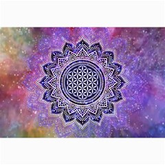 Flower Of Life Indian Ornaments Mandala Universe Canvas 12  X 18   by EDDArt