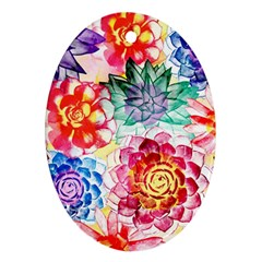 Colorful Succulents Ornament (oval)  by DanaeStudio