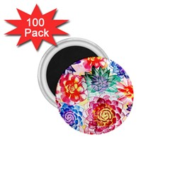 Colorful Succulents 1 75  Magnets (100 Pack)  by DanaeStudio