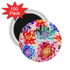 Colorful Succulents 2 25  Magnets (100 Pack)  by DanaeStudio