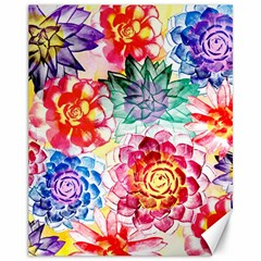 Colorful Succulents Canvas 11  X 14   by DanaeStudio