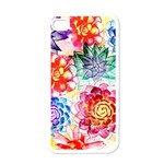 Colorful Succulents Apple iPhone 4 Case (White)