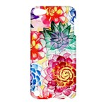 Colorful Succulents Apple iPod Touch 5 Hardshell Case