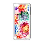 Colorful Succulents Apple iPod Touch 5 Case (White)