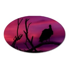 Vultures At Top Of Tree Silhouette Illustration Oval Magnet by dflcprints