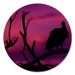 Vultures At Top Of Tree Silhouette Illustration Magnet 5  (round) by dflcprints
