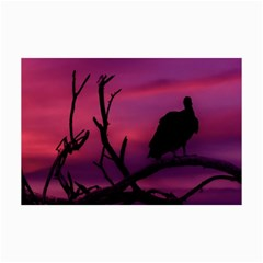 Vultures At Top Of Tree Silhouette Illustration Collage Prints by dflcprints